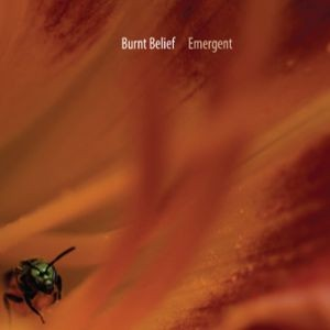 BURNT-BELIEF_Emergent