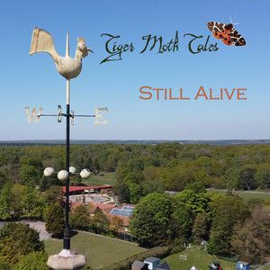 Album TIGER MOTH TALES Still Alive (2020)
