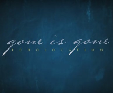 GONE-IS-GONE_Echolocation