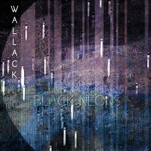 WALLACK_Black-Neons