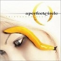 A-PERFECT-CIRCLE_Thirteenth-Step