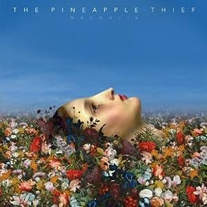 PINEAPPLE-THIEF_Magnolia