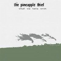 PINEAPPLE-THIEF_What-We-Have-Sawn