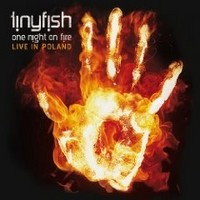 TINYFISH_One-Night-On-Fire