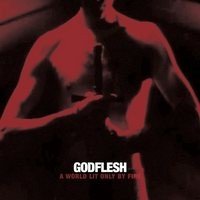 GODFLESH_A-World-Lit-Only-By-Fire