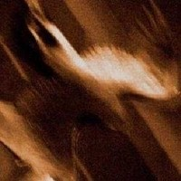 AGALLOCH_Ashes-Against-The-Grain