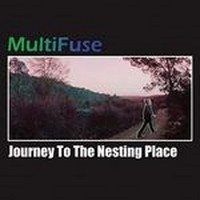 MULTIFUSE_Journey-To-The-Nesting-Place