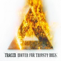 TRACER_Water-For-Thirsty-Dogs